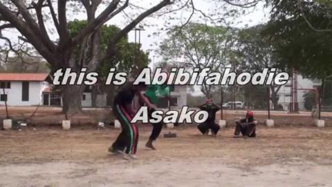 Part 16: CAPOEIRA Jogo Duro! Afrikan Combat Capoeira Fight and Sparring Vines
