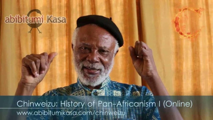 Chinweizu Online Course Promo Video: History of Pan-Africanism I