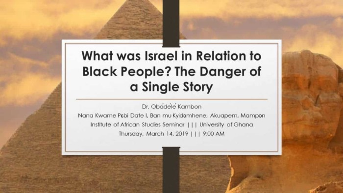 What was Israel in relation to Black People: The Danger of a Single Story